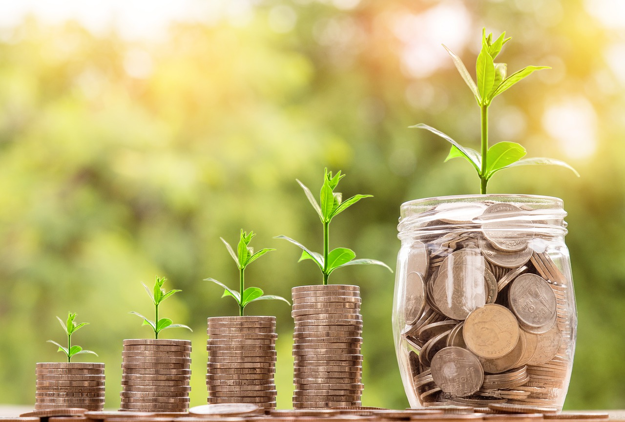 """Image associée à Faire un don - Plantules et plantes qui """"poussent"""" sur de l'argent-monnaie"""