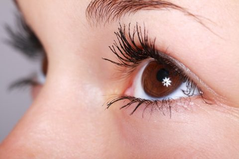 Oeil - Article sur la kératoconjonctivite vernale