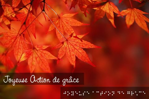 Des feuilles d'arbres orangées sont visibles dans la portion supérieure de l'image. Au bas de celle-ci, le texte « Joyeuse Action de grâce » est inscrit en braille et en lettres attachées.